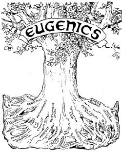 black-eugenics