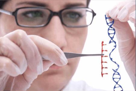 genetics2