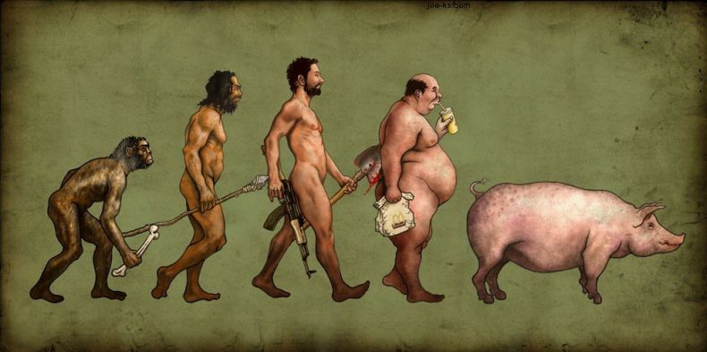 evolution-funny
